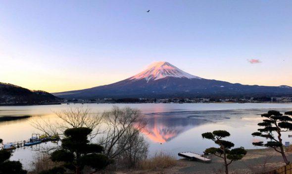Morning Glory Reflecting Mt. Fuji