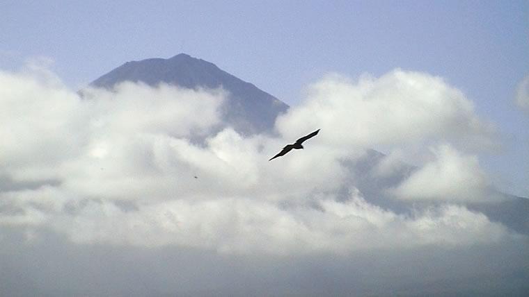 富士に向かう