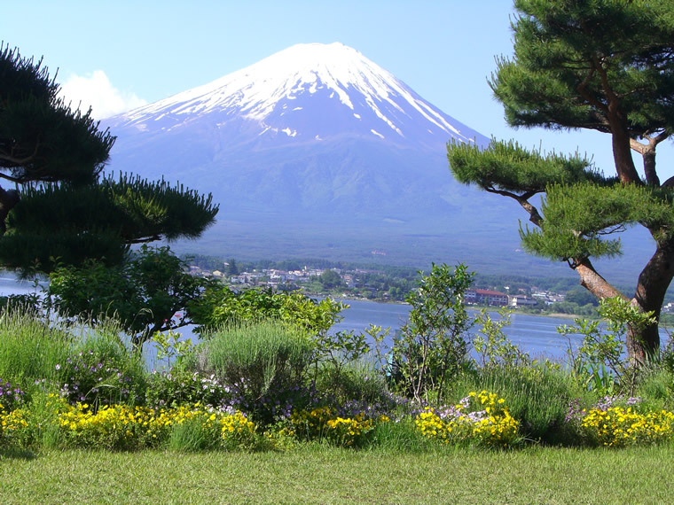 ぼくの富士山